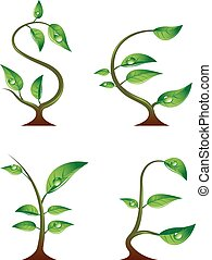 Currency symbols concept - Four seedlings in the form of...