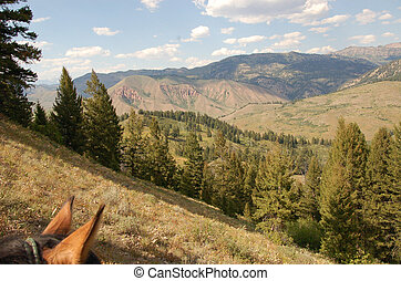 Wyoming Back Country - Back Country
