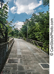 Tree-lined Pedestrian Walkway with fence