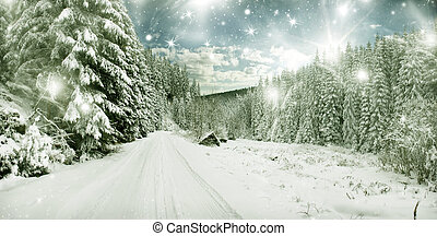 winter landscape - snow covered trees and sky with stars -...