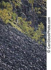 Rock Slope - Gravel slope with growing trees