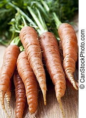 Carrots - Bunch of whole fresh organic orange carrots