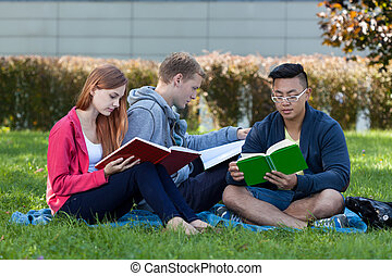 Diverse group of students learning on the grass