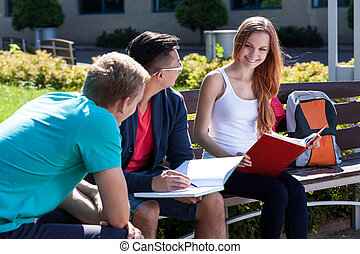 College friends studying together outdoors - Group of...