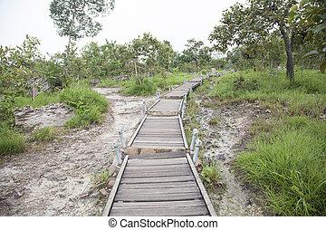 Walkway bridge to mountain - Walkway bridge and up the...