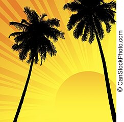 coconut tree - silhouette of coconut tree