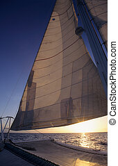 Catamaran on Caribbean sea - Dominican republic - Main sail...