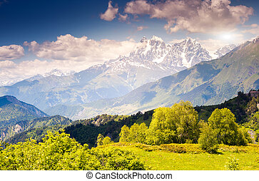 mountain landscape - Beautiful view of alpine meadows at the...