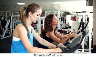 Using Exercise Bikes - Young women use exercise bicycles in...