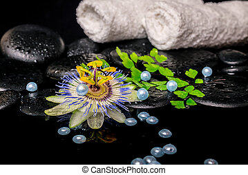 spa concept of passiflora flower, branch fern, towels, zen...
