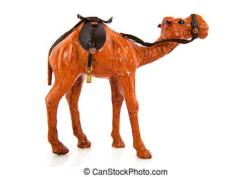 Maroc camel with