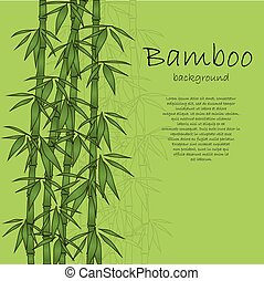 Bamboo background - Green background with bamboo and text....