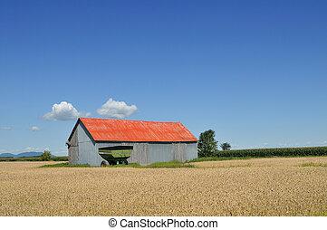rojo, granero, campos