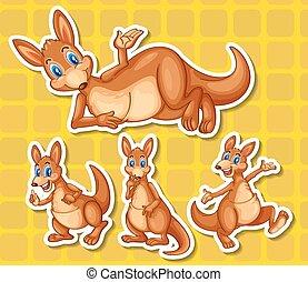 Kangaroo - Illustration of a set of kangaroo
