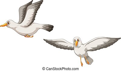 Birds - Illustration of two birds flying