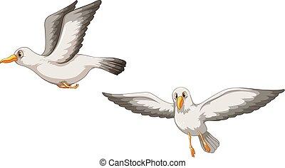 Birds - Illustration of two birds flying