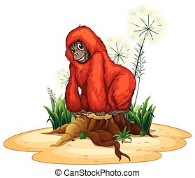 Orangutan - Illustration of a close up orangutan