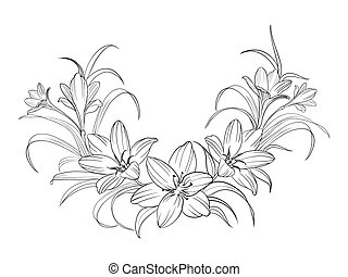 Crocus flowers. - Crocus flowers isolated over white. Vector...