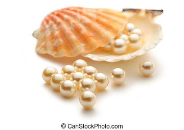 branca, pérolas, em, seashell,