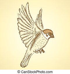 Sketch cute sparrow, vector background in vintage style