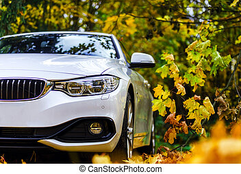 Luxury white car and autumn colors, nature vs technic