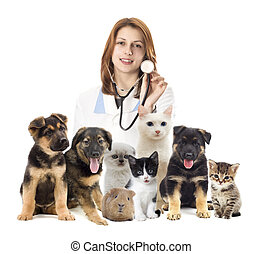 veterinarian and cat and dog