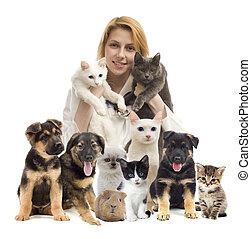 vétérinaire, et, chat, et, chien,