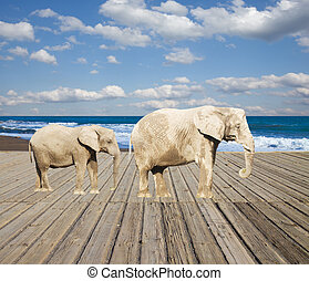 old pier with elephants