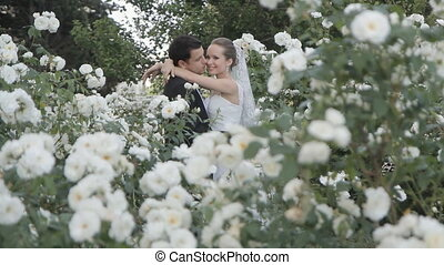 The bride put her head on the shoulder of the groom among the bushes of white roses