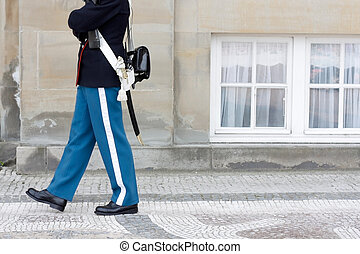 Royal Danish Guard - Guarding the Queen of Denmark