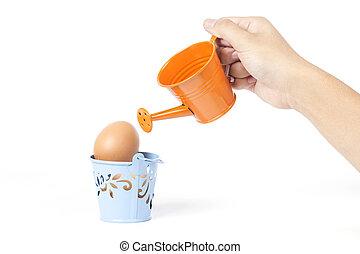 Egg/Good for health