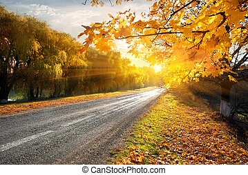 Highway and autumn - Highway through the autumn forest in...