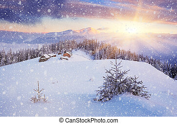Christmas landscape - Beautiful Christmas landscape. Dawn in...