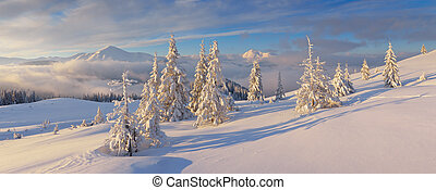Winter panorama - Christmas landscape Winter panorama with...