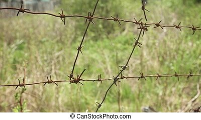 Barbed wire on a background of grass