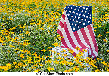 flag on chair in yellow daisy field - American flag on a...