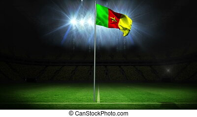 Cameroon national flag waving on flagpole against football...