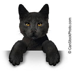 Black Cat - Black cat as a symbol for superstition and an...