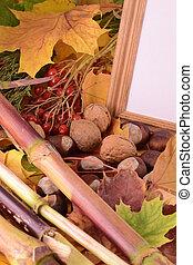 viburnum and chestnut on vintage wooden boards background...