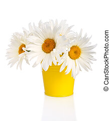 Delicate Chamomile Bouquet in the Yellow Pail
