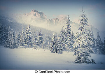 Foggy winter morning in the mountain forest Retro style