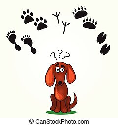 Cute Dogs Game - Cute Dogs Game -help dog find his footprint...