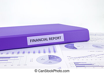 Financial report and business graph analysis - Purple binder...