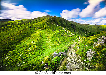 summer landscape. mountain path on the blue sky background....