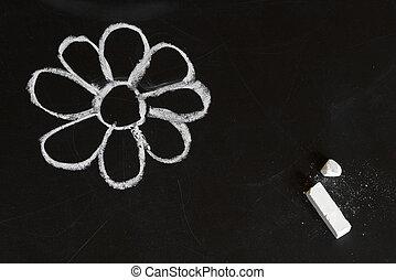 Chalk flower - White flower on a blackboard, child chalk...