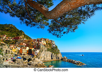 Manarola village and pine tree, rocks and sea at sunset...