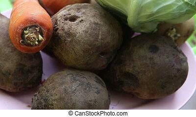 vegetables for borscht lie on a plate - beet, potato, onion...
