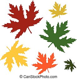 Set of leaves - Set of autumn maple leaves of different...