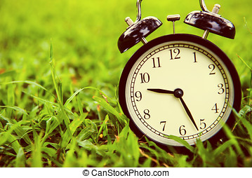 The clock on grass background