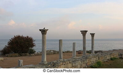 Columns of the Ancient Greek temple in Chersones,...